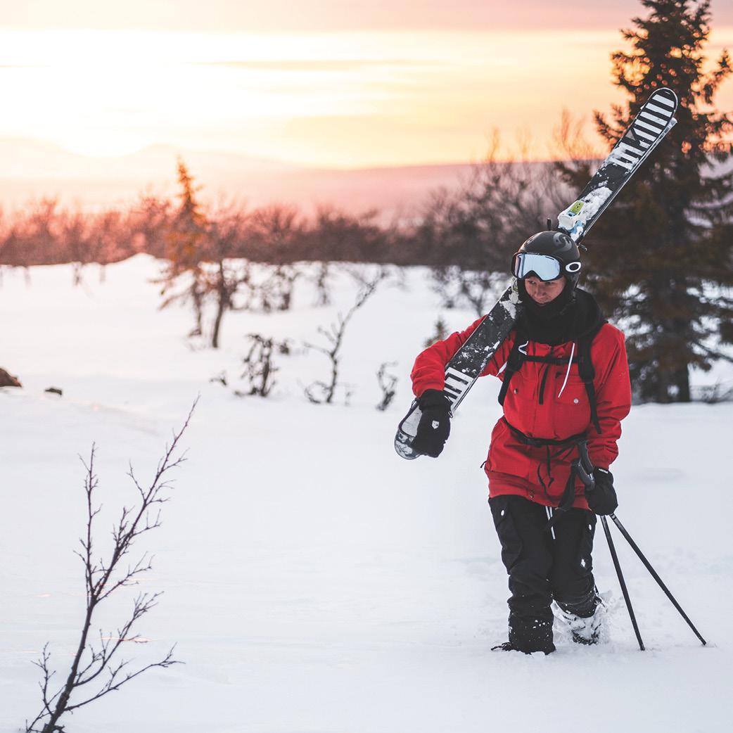 ski freeride prosneige